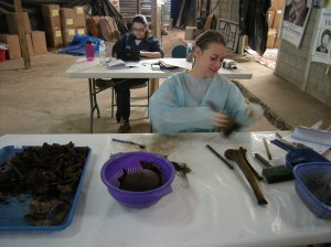 Elise Geissler cleans human bones as part of FAFG's search for victims of Guatemala's armed conflict. Photo by Barbara Borst